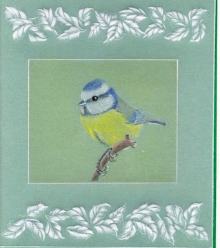 Blue Tit Pattern